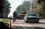 bike-lane-in-suburbs