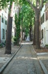 charming-street-in-philly